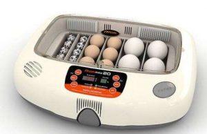 Gambar Mesin Penetas Telur Terbaru
