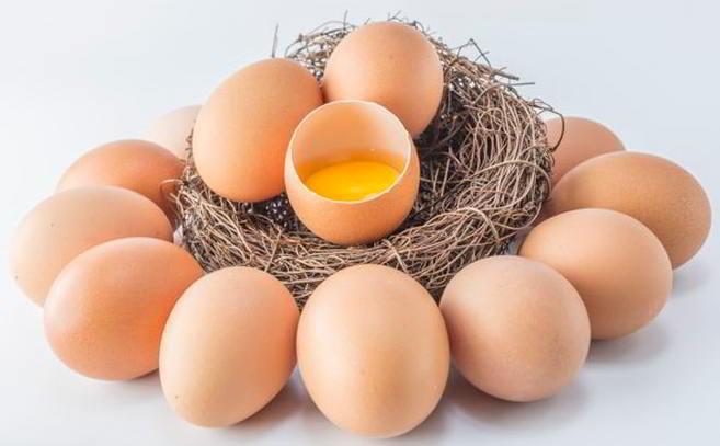 Telur Ayam Broiler Berkualitas